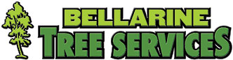 Bellarine Tree Services Geelong | Professional Tree Service Company In Victoria